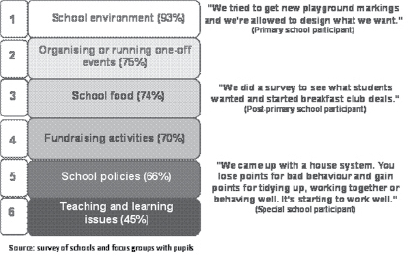 Figure 4: Survey and focus group findings on areas of influence